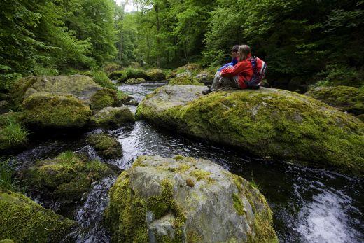 © Tourismusverband Vogtland e.V - Fotoquelle Triebtal